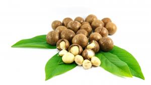 Hạt Macadamia có tốt cho bạn không? Dinh dưỡng , lợi ích và hơn của hạt Macadamia
